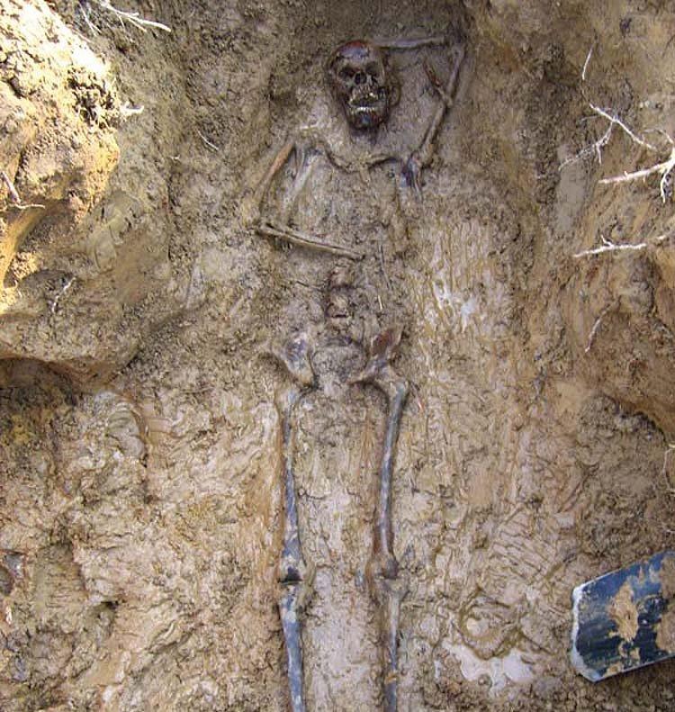 """В африке нашли останки """"иного"""" человека glunews.ru // интересные и смешные новости."""