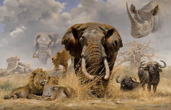 Большая подборка забавных животных 165 фото  Релаксик