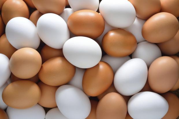 Ученые доказывают, что яйца полезнее яблок